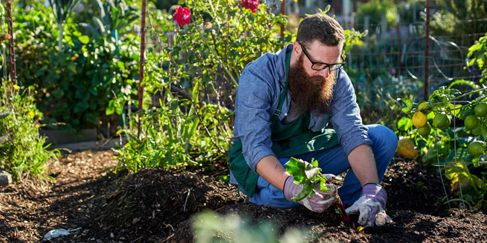 A person gardening