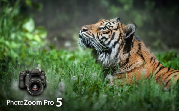PhotoZoom Pro 5 - Product Image