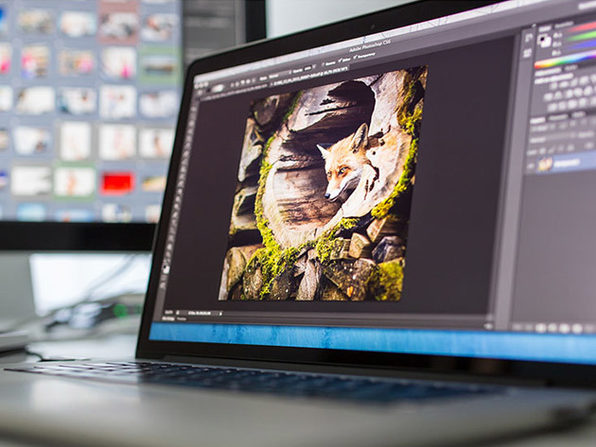 Introduction to Photoshop - Product Image