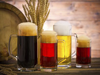 Mastering Home Beer Brewing - Product Image