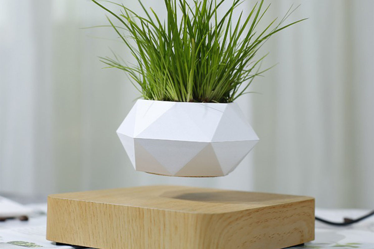 A geometric floating planter, hovering over a wood block