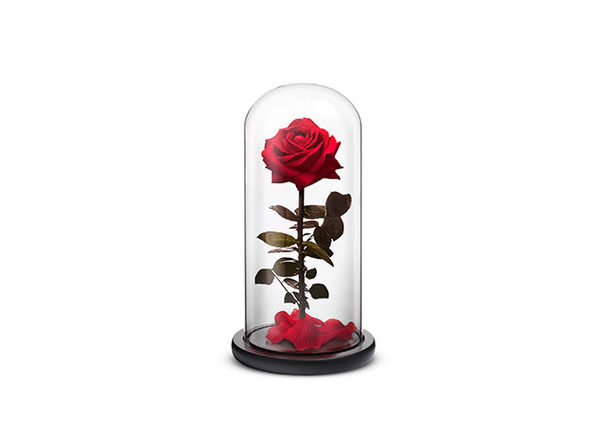 Everlasting Rose - Red / Small - Product Image