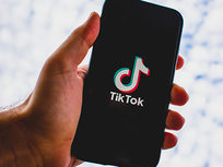 TikTok Marketing 2020: Grow Your Account & Master TikTok Ads - Product Image
