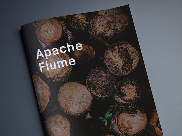 Apache Flume: Distributed Log Collection for Hadoop: Second Edition eBook - Product Image