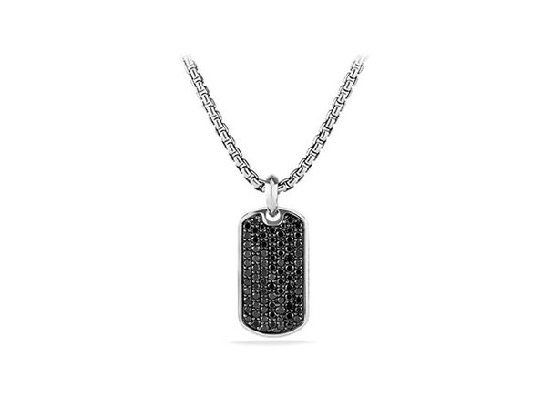 Stainless Steel Dog Tag Pendant Necklace (Silver/Black)