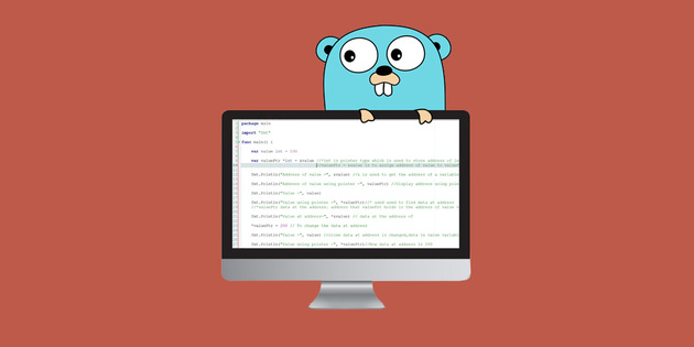 The Go Programming Language Guide: Code Like a Pro | StackSocial