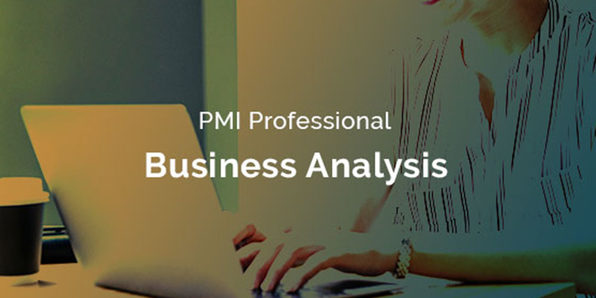 PMI Professional in Business Analysis (PMI PBA)® - Product Image
