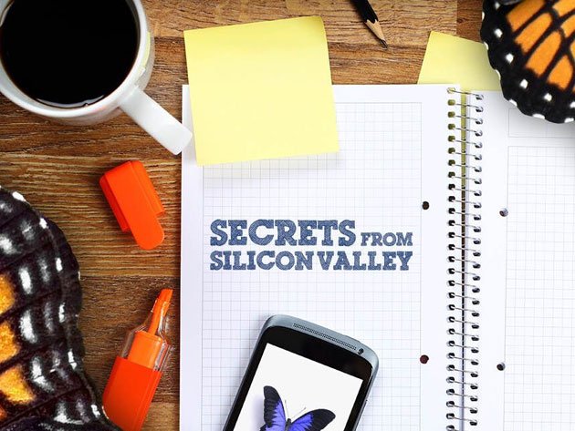 Secrets from Silicon Valley