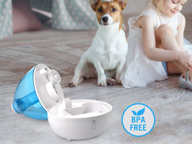 Ensure that your sinuses, skin, and eyes remain moist by using this humidifier which is now on sale