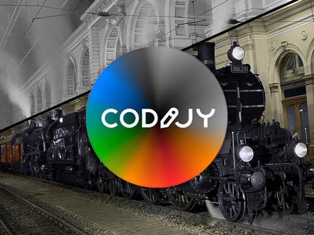 CODIJY Photo Colorization: Pro Studio Lifetime License