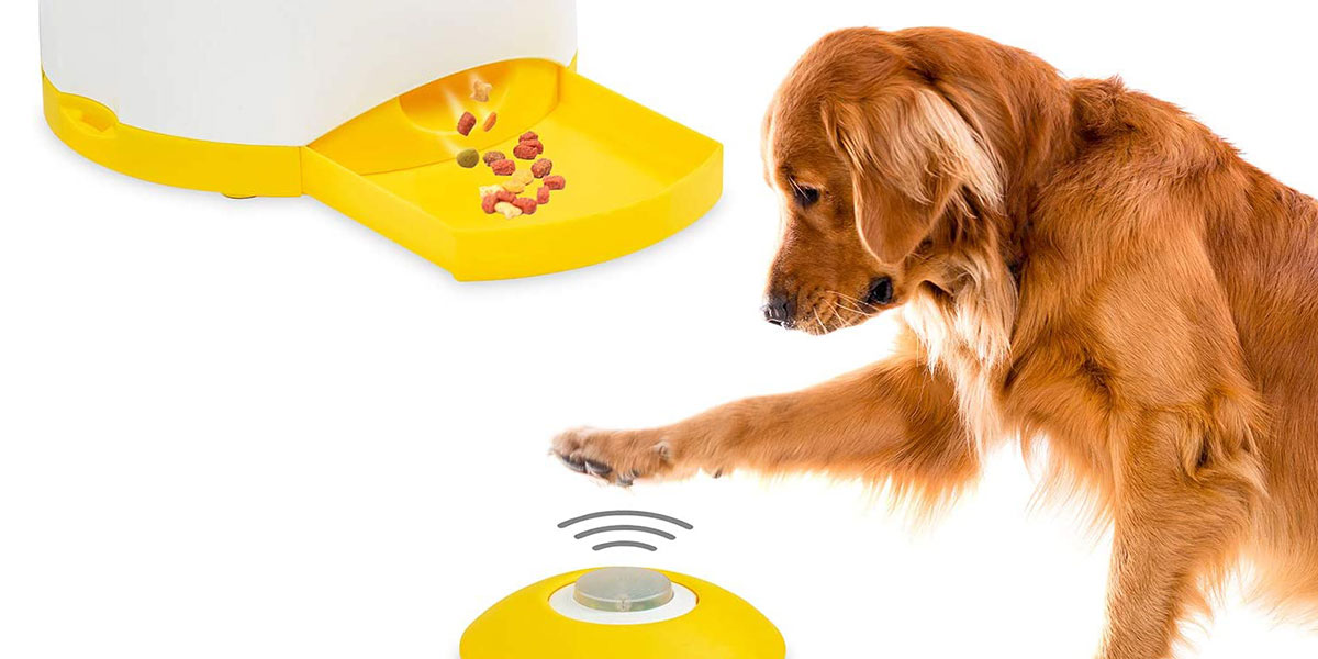 Arf Pets Memory Training Puzzle Toy