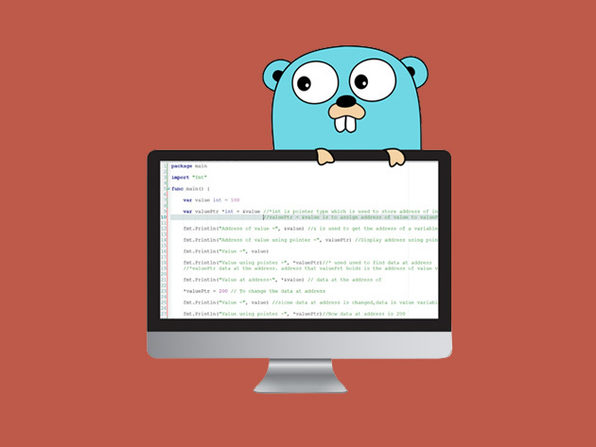 The Go Programming Language Guide: Code Like a Pro