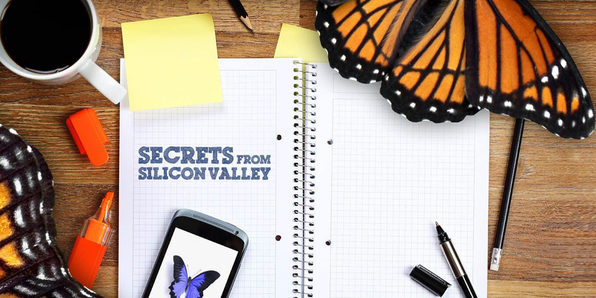Secrets from Silicon Valley - Product Image