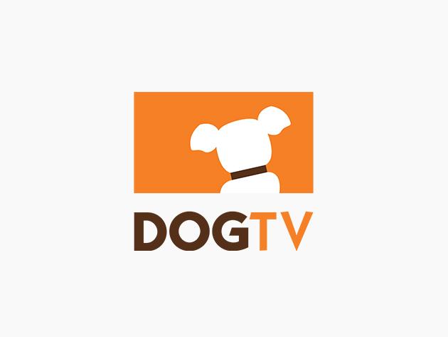 DOGTV: Lifetime Subscription