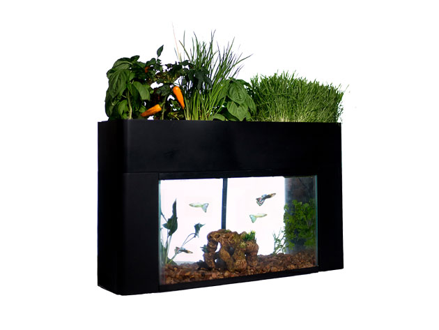 An AquaSprouts gardener