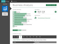 Business Analysis - Product Image