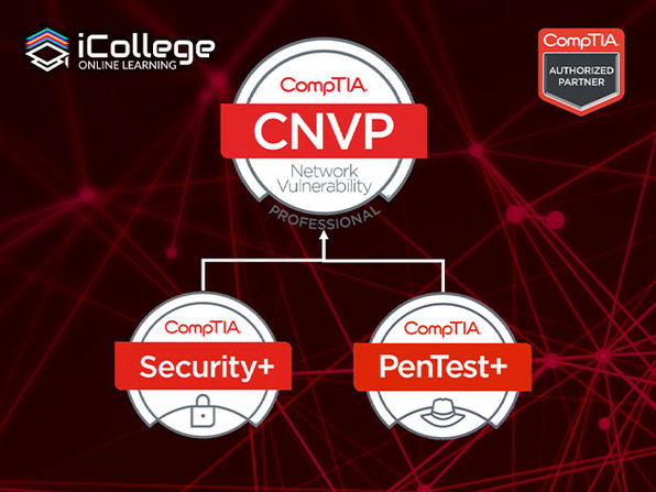 The CompTIA Network Vulnerability Assessment Professional Bundle - Product Image