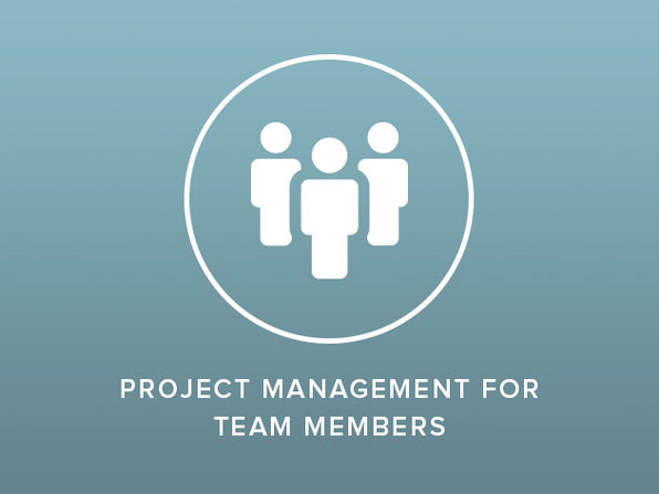 Project Management for Team Members - Product Image