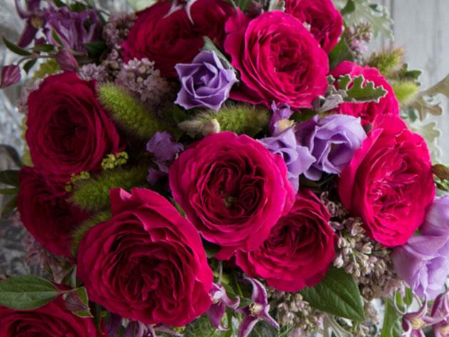Love Everyday Offer: 2 Dozen Roses for $49.99 (reg. $81)