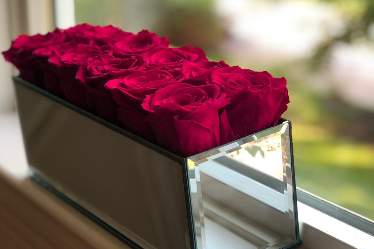 Roses in a mirrored box