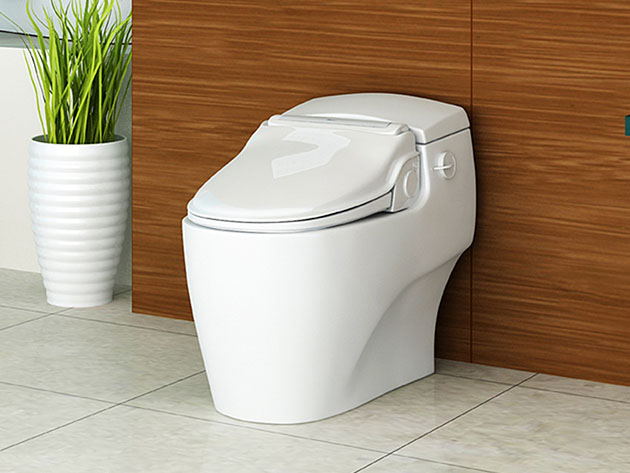 A toilet seat with a bidet attachment