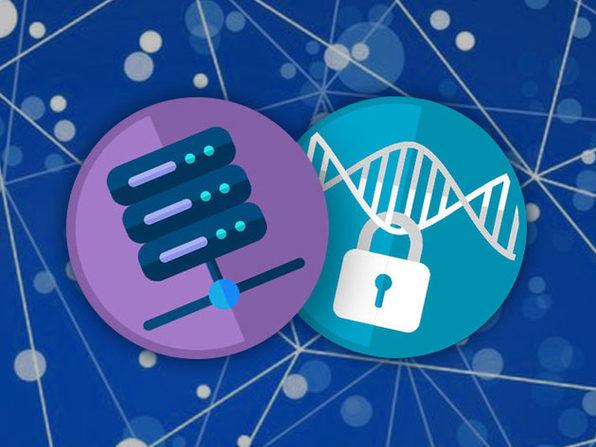 SSDPage Anti-Hacker Premium Web Hosting: Lifetime Subscription