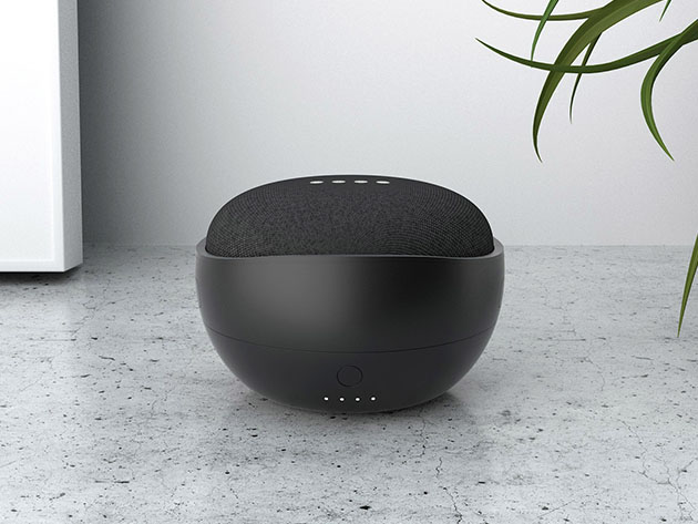 A Google Home device.