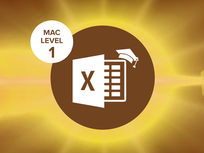 Excel 2016 Mac Level 1 - Product Image