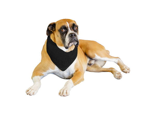 2-Pack Solid Polyester Dog Neckerchief Triangle Bibs - Extra Large - Green