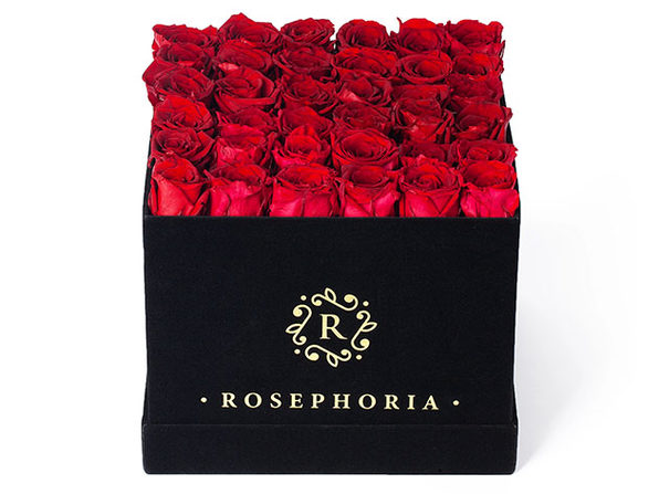 36 Rose Square Box - Red - Product Image