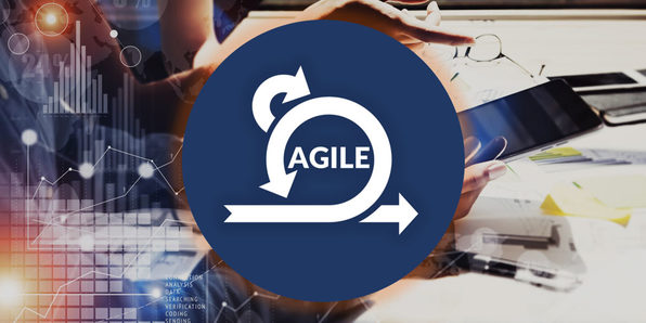 Agile Project Management - Product Image