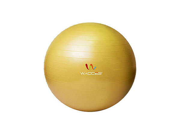 Wacces Anti-Burst Yoga Ball with Pump (Yellow)