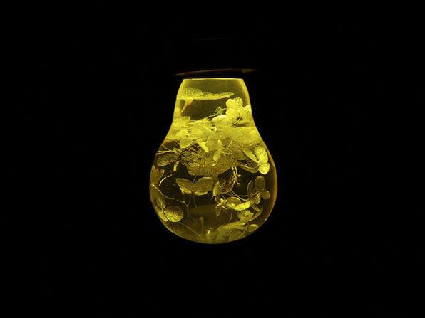 E.P. Eco-Friendly LED Light Bulb + Metal Base (Yellow Hydrangea)
