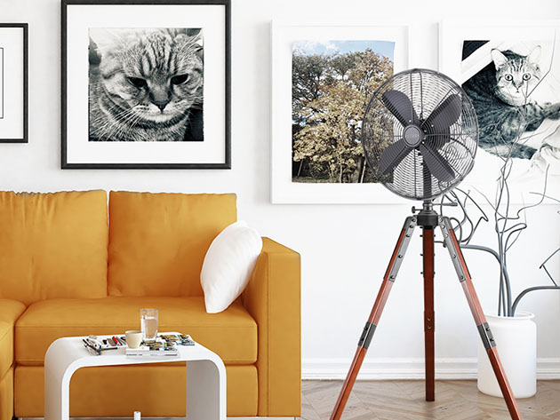A room with a sofa, a fan on a tripod, and art on the walls
