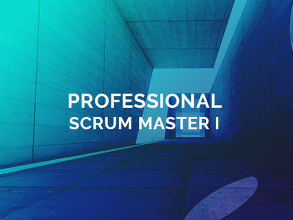 Agile Certified Practitioner & Professional Scrum Master Courses + Tests Training Bundle