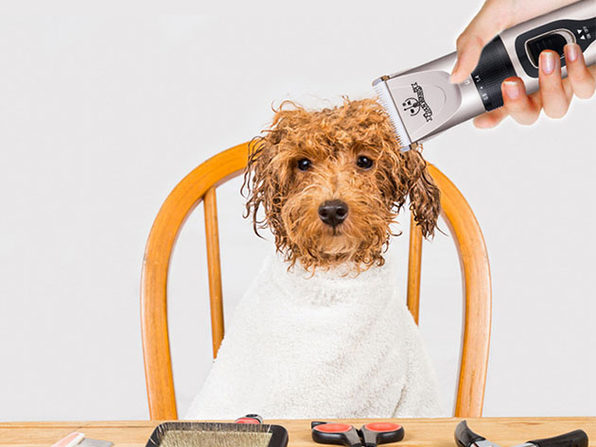 Pet Grooming Kit: Cordless Trimmer, Combs, Scissors & More
