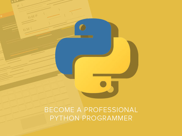 Become a Professional Python Programmer - Product Image