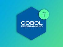 Enterprise COBOL Programming Part 1 - Product Image