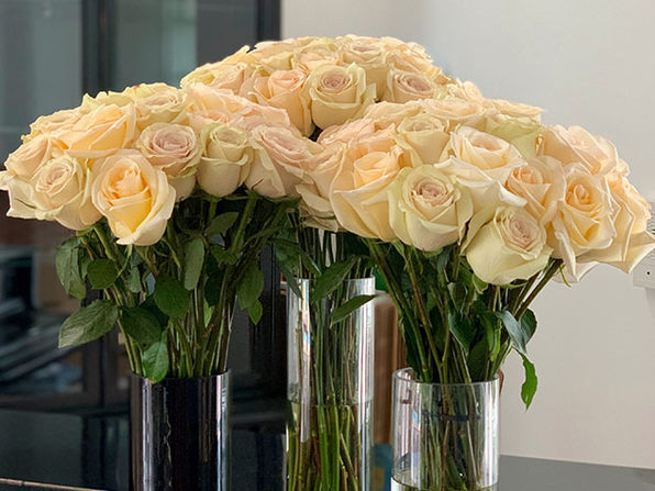Get a Dozen Cream Roses for Your Valentine for Only $39.99 Shipped! (Digital Voucher)