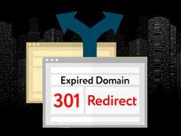 SEO Secrets of Google: Expired Domains & 301 Redirects - Product Image